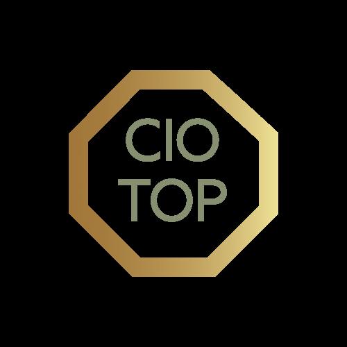 CIO Top logo